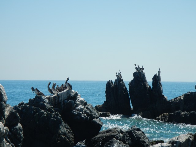 Vina del Mar (2)