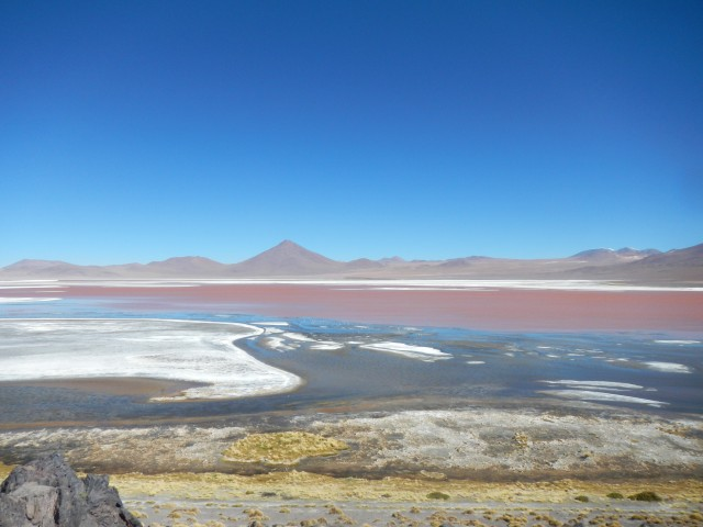 Salar de Uyuni (14) Laguna Colorada