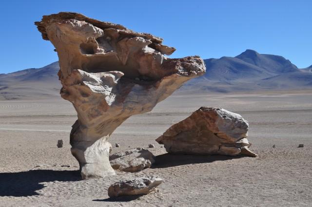 Salar de Uyuni (16) Arbol de Piedra