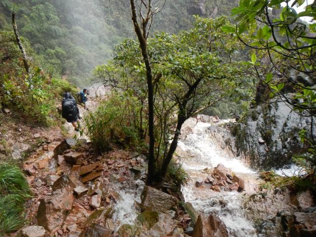 Roraima (34) Terug door de Waterval