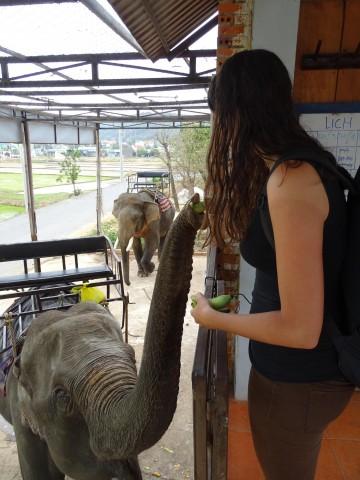 Tineke met een olifant