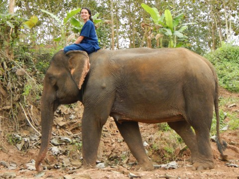 Tineke op de olifant